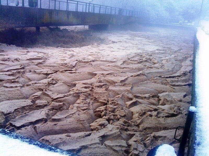 STEP BA flottants sur boues activées bacteries bacteria - 1H2O3
