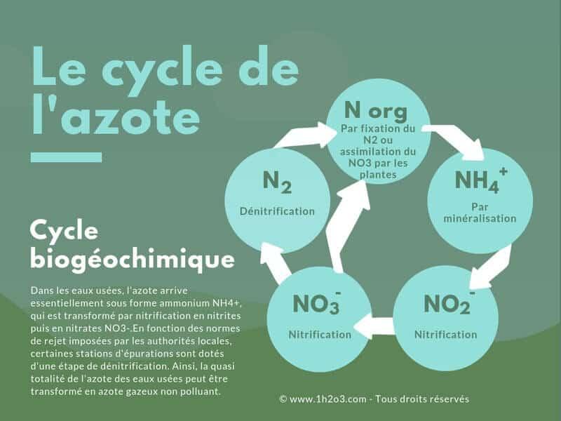cycle de l'azote biogéochimique traitement eau paramètres des eaux usées 1h2o3