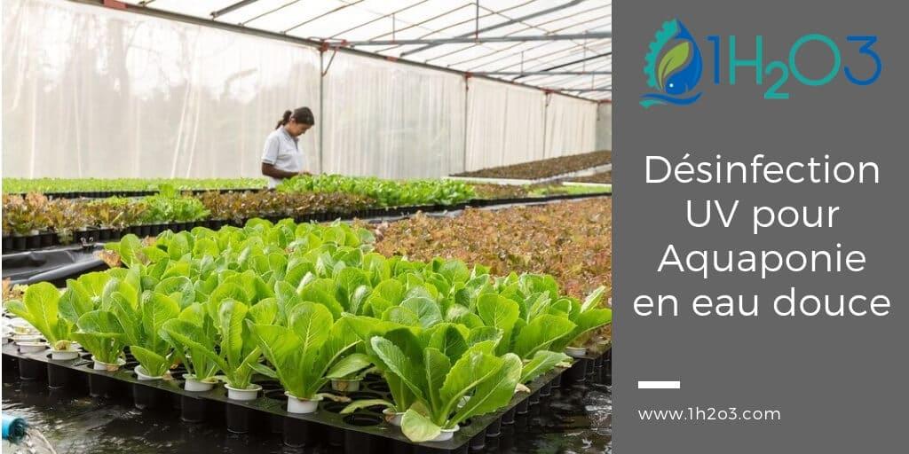 Désinfection UV appliquée à l'aquaponie, l'aquaculture et la pisciculture en eau douce