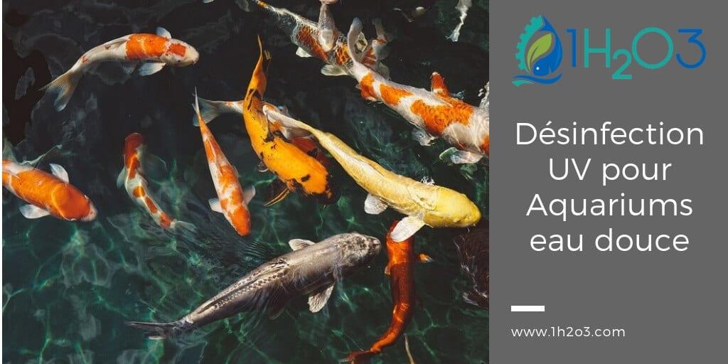 Désinfection UV appliquée pour Aquaponie / Aquaculture / pisciculture en eau douce