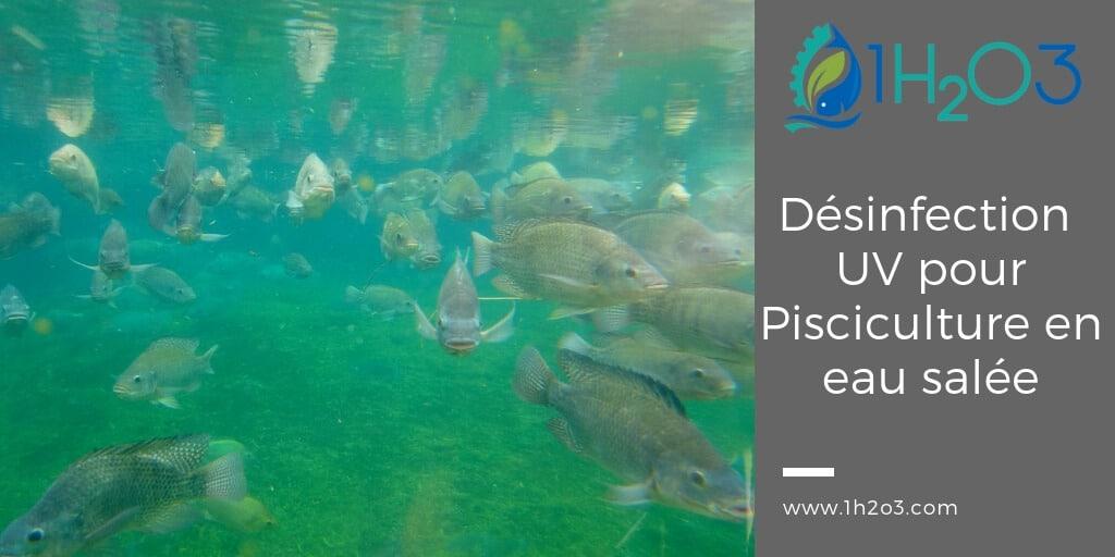 Désinfection UV appliquée à l'aquaculture/pisciculture en eau salée