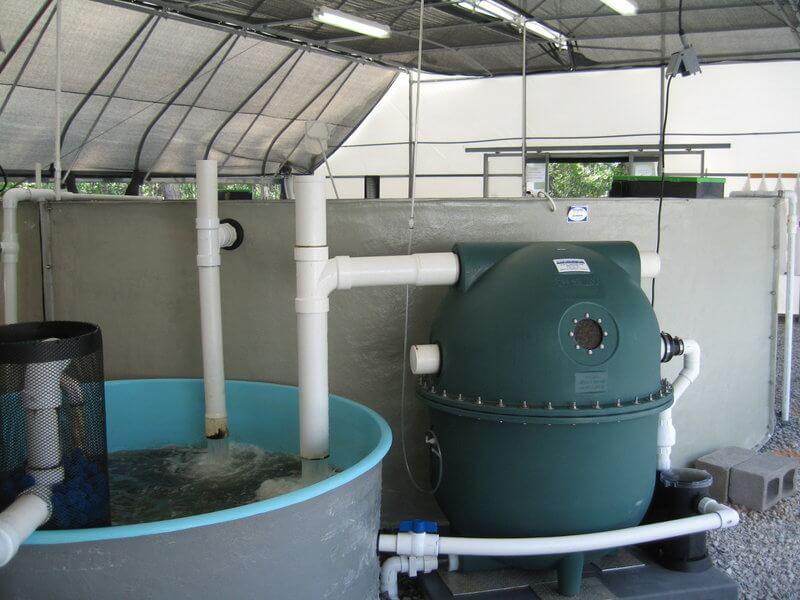 filtre biofiltre aquaponie aquaculture filter aquaponics centre de recherche research center 1h2o3